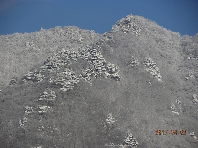 170402-2村浜上雪